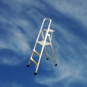 house-hold-ladder